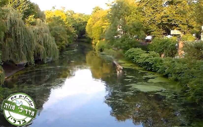 צמחיה לאורך הנהר בעיירה Konigs Wusterhausen
